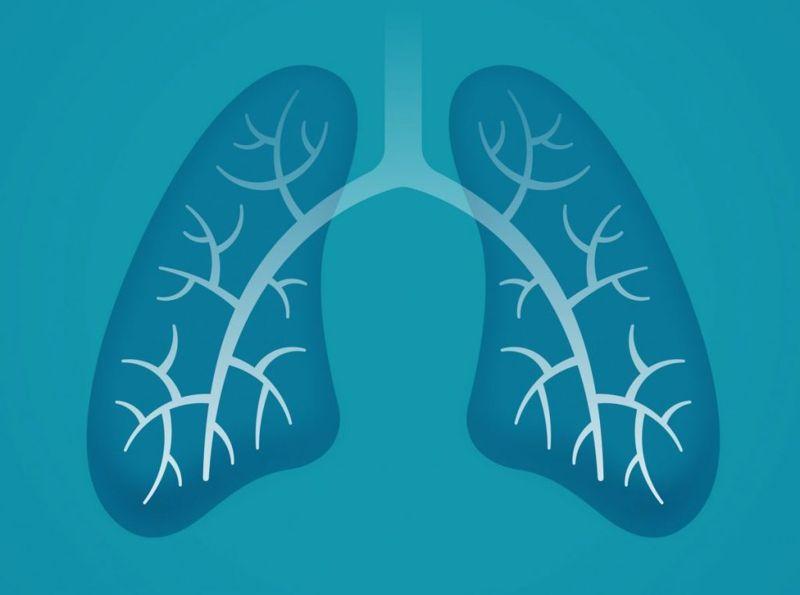 healthy lungs oxygen inhalation exhalation