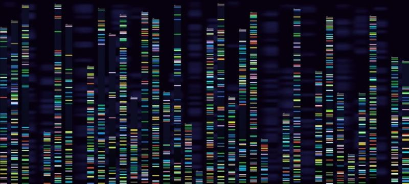 alport research therapies dna editing