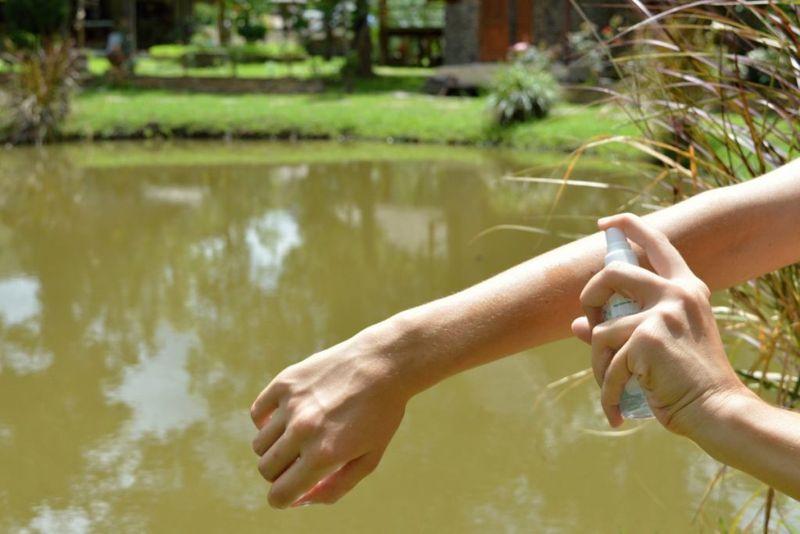 citronella mosquito repellant