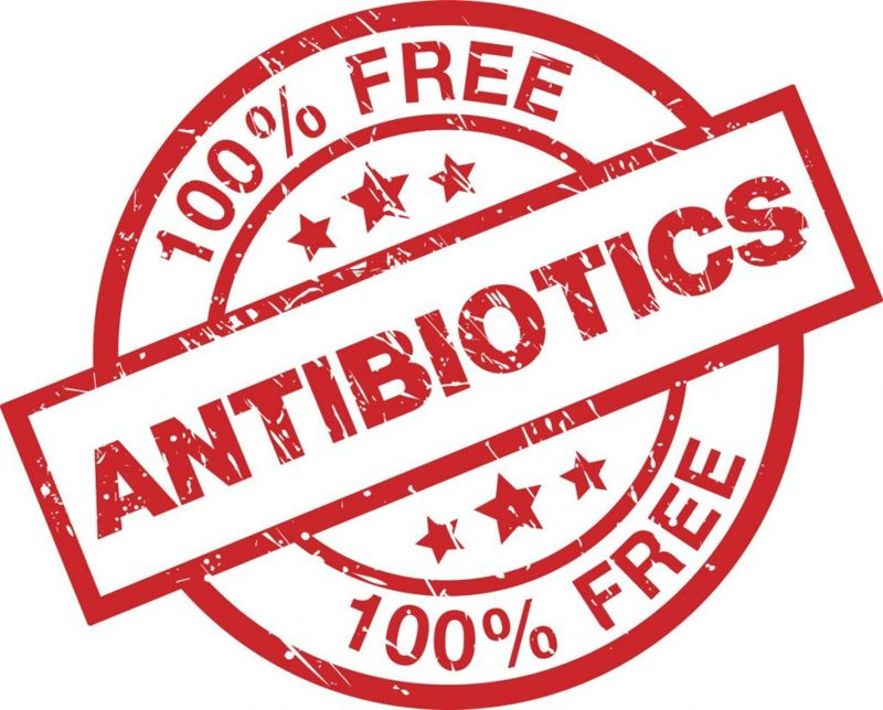antibiotic free standard USDA