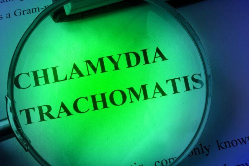 Chlamydia trachomatis bacteria conjunctivitis