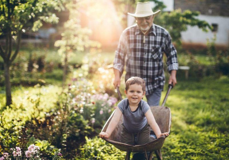 gardening, grandchildren, plants, growing