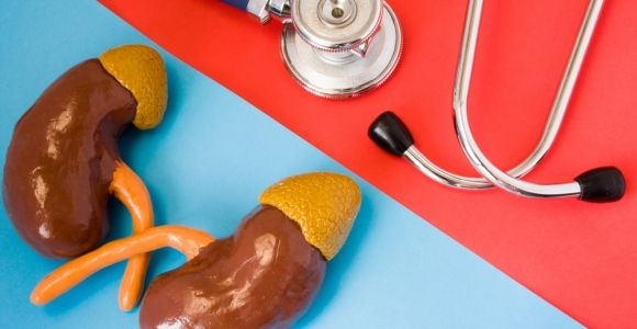 What are the Adrenal Glands?