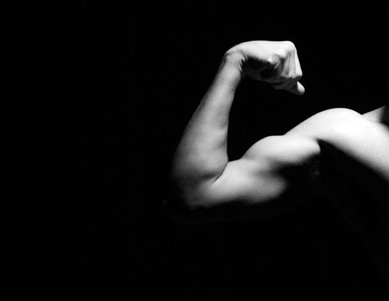 muscle flexion extension