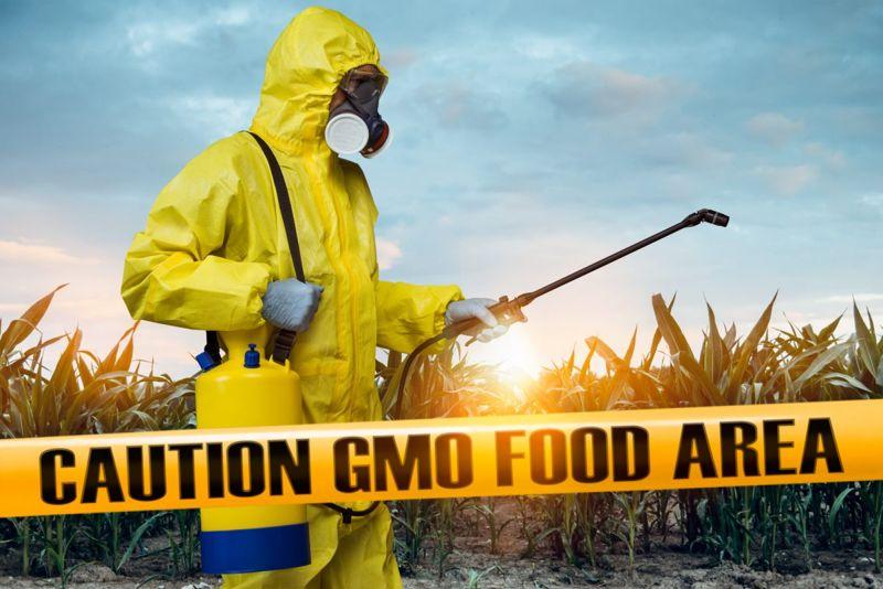 crop engineering allergens