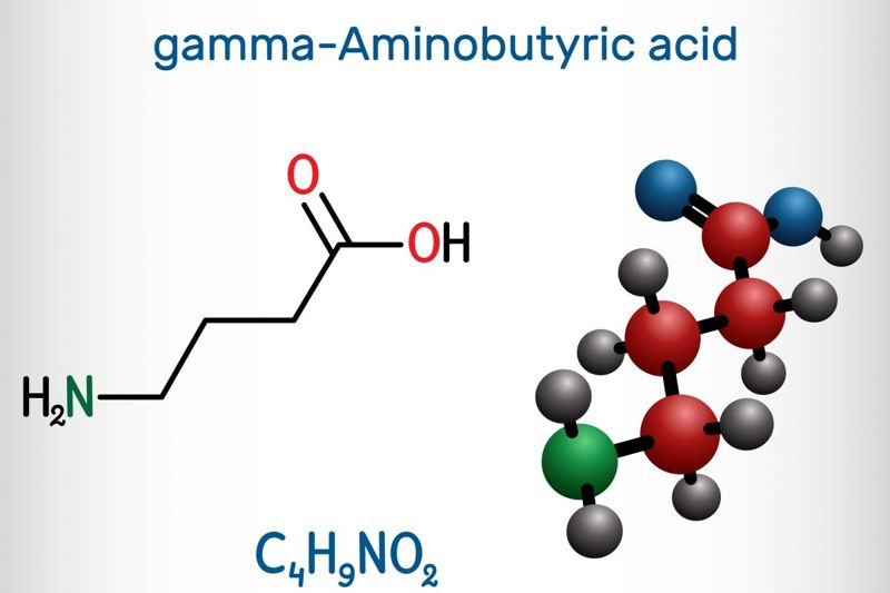 glycine gaba neurotransmitter amino acids
