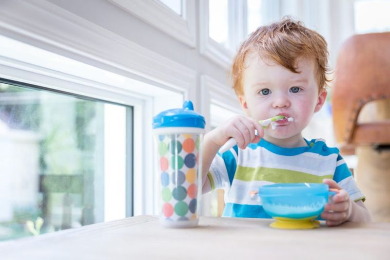 18 Month Eating