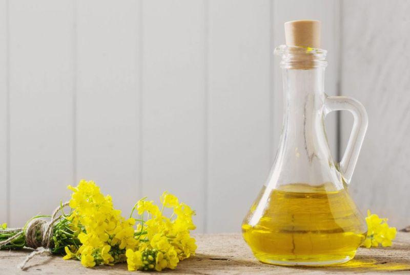 Heart healthy canola oil
