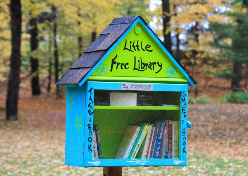 Why buy a book when you can get one from a little free library?