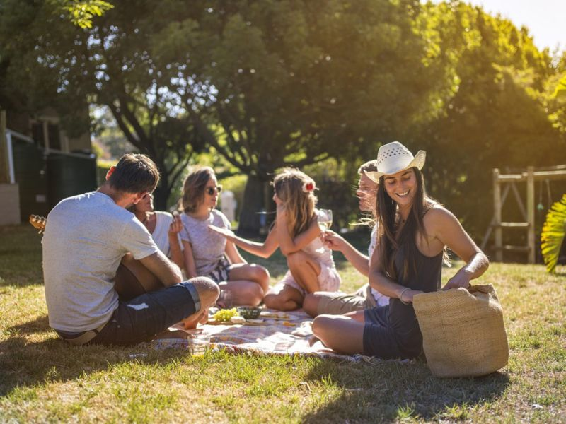 Yard picnic sunshine home vacation