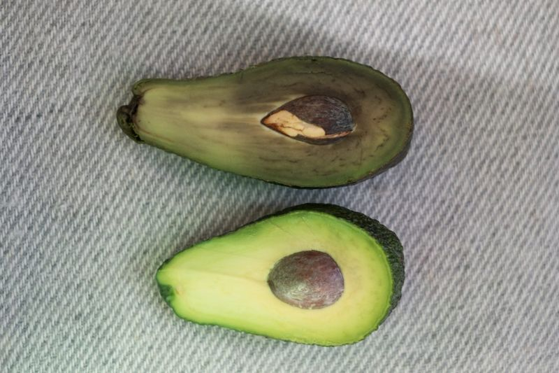 brown avocado