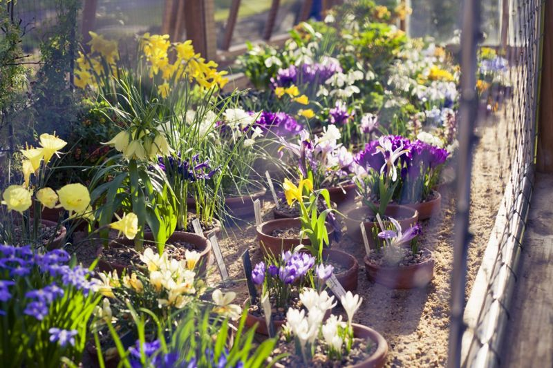 Terracotta Clay Pots Half-Bury Garden