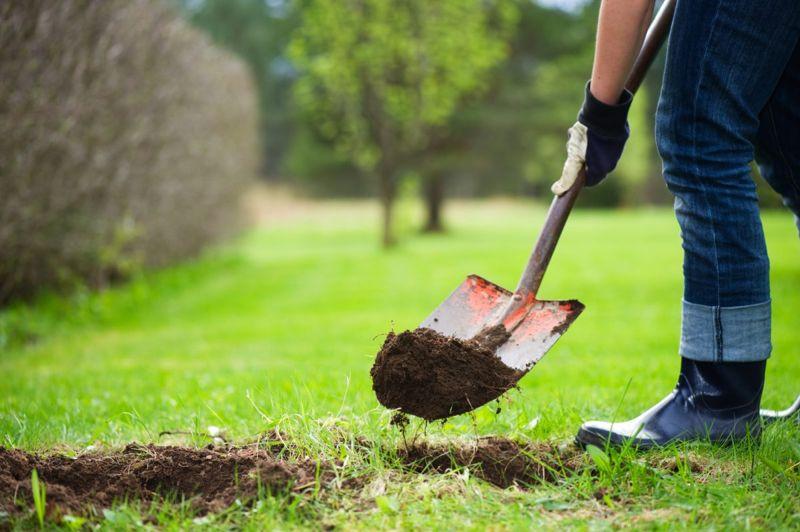 yard digging hole