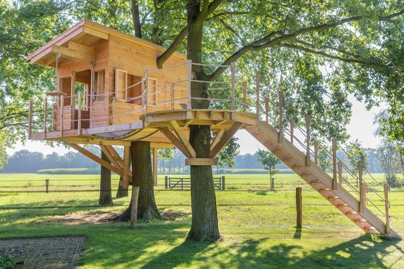 A tree house with bracing across two trees is especially sturdy.=