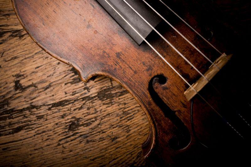 Close-up of Vintage Violin Strings