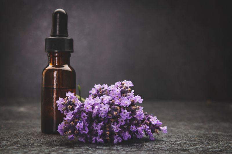 lavenda background with space on dark background