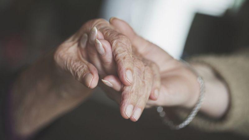 Alzheimer's Disease brain