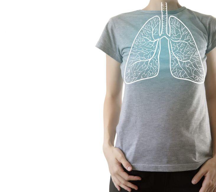 lungs diaphragm ribs