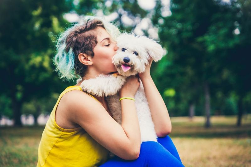 Poodles make great pets