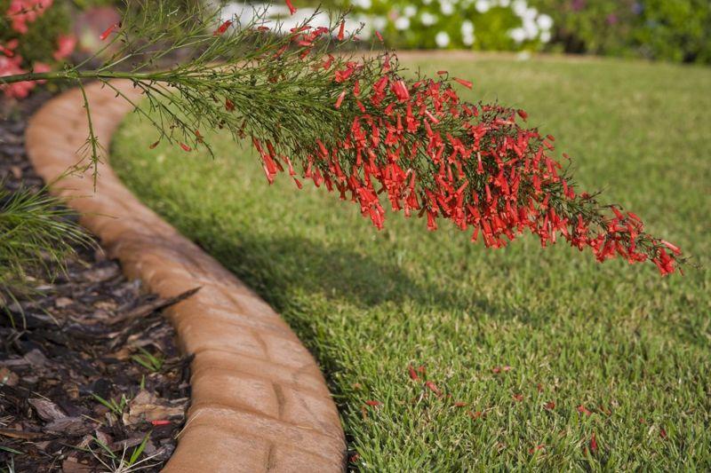 lawn garden edging