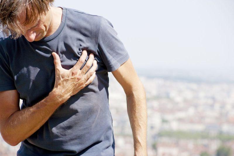 Atherosclerosis Plaque Cholesterol