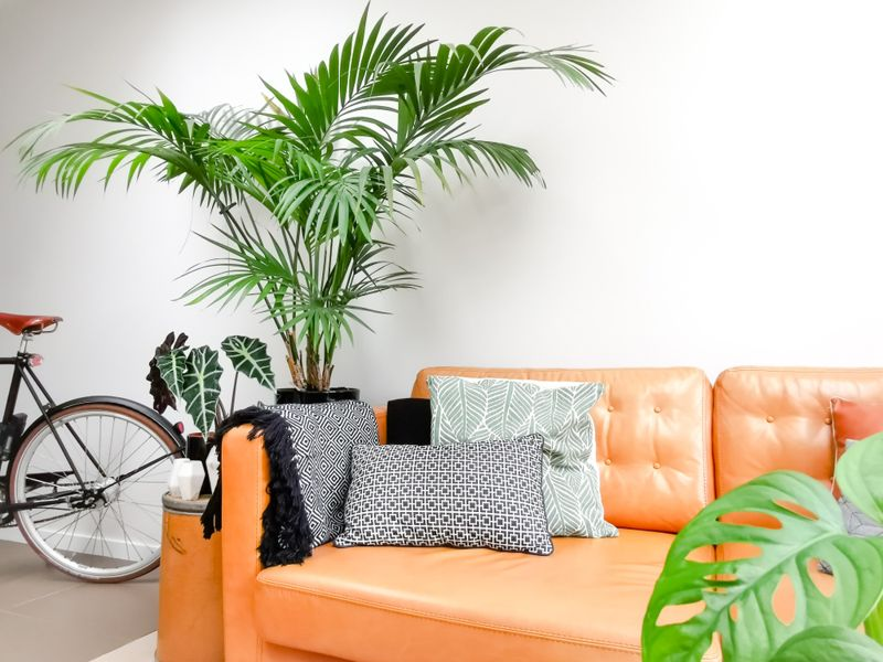 Light modern living room with brown leather couch and numerous houseplants creating an urban jungle