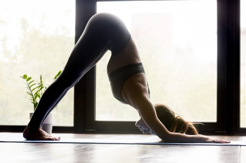 downward dog pose yoga