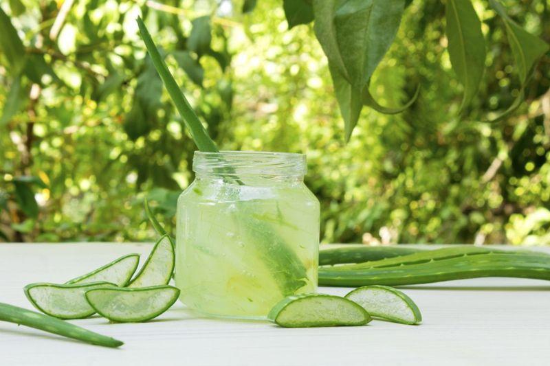 fresh clear aloe vera drink