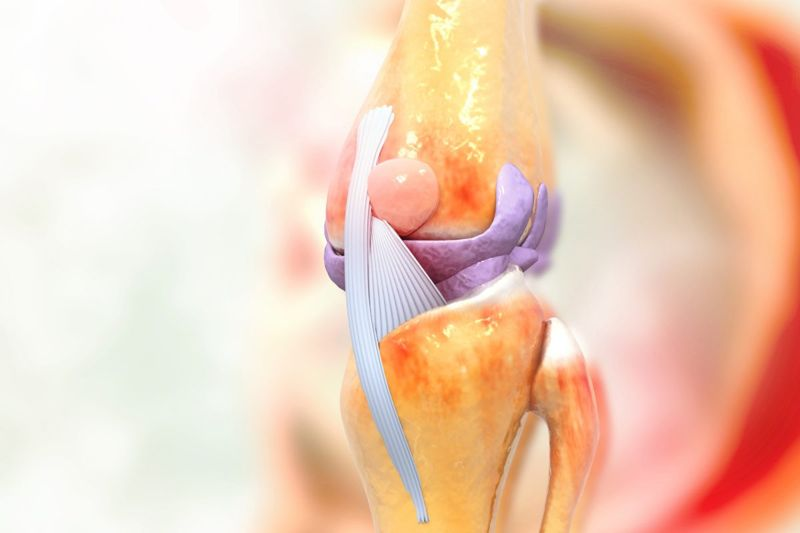 lateral meniscus outside