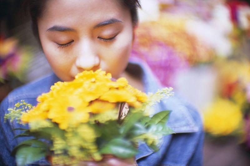olfactory nerve smell