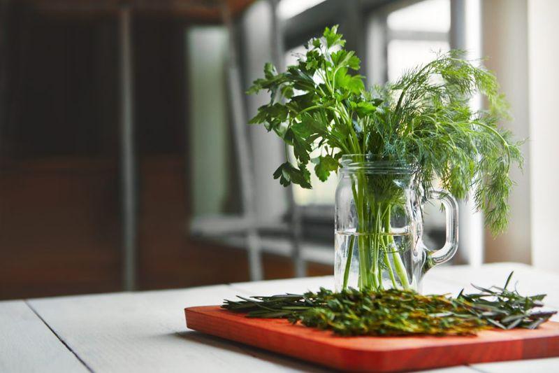 Fresh herbs in water