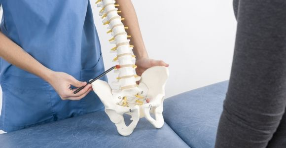 The Lumbar Vertebrae and Their Functions