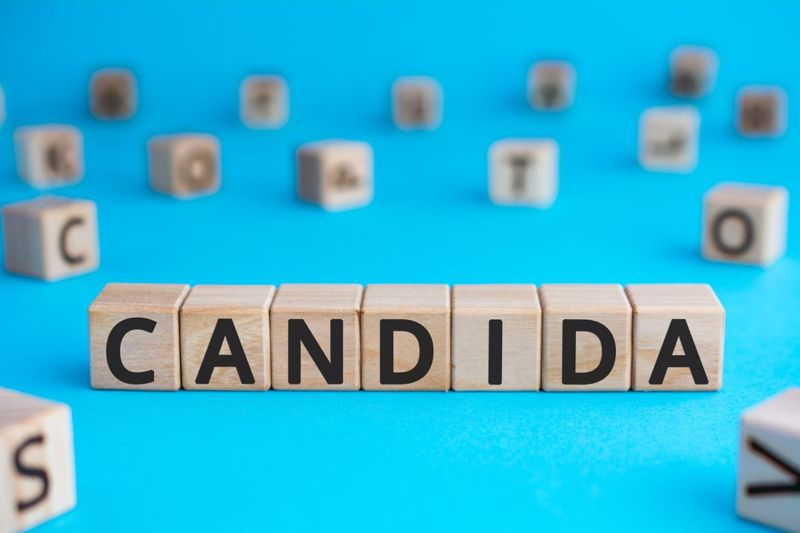 candida in letter blocks
