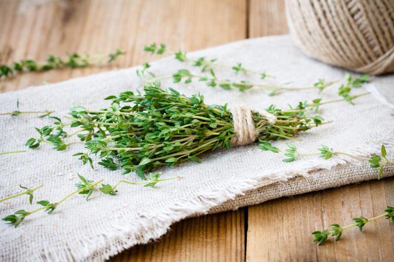 bundle thyme herb