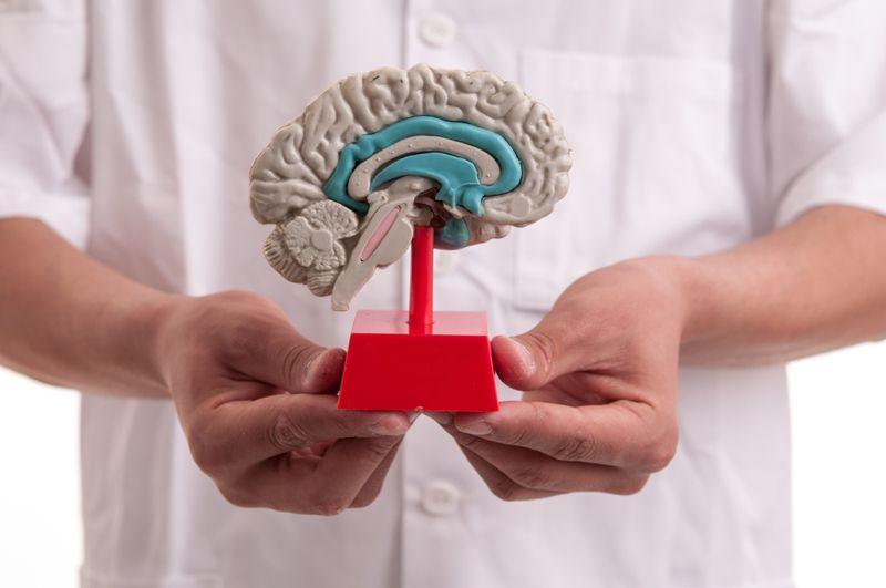 brain model ketones