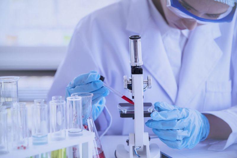 scientist antibodies microscope