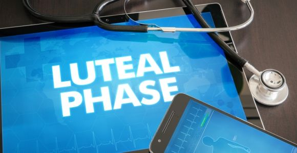 The Luteal Phase of Menstrual Cycle