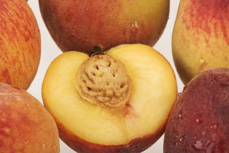 allergies histamines inflammation peaches