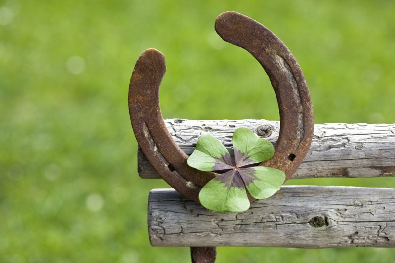 Lucky clover and horseshoe
