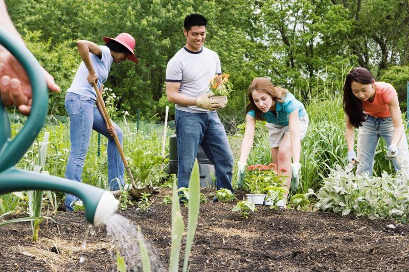 outdoor spaces community garden