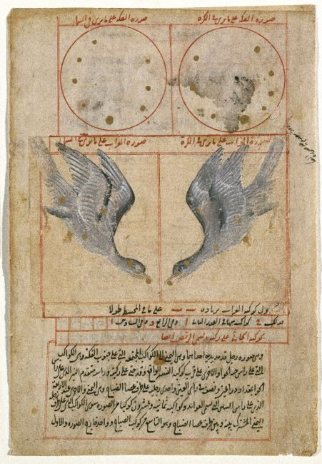 The Constellation of Corvus the Raven Brooklyn Museum