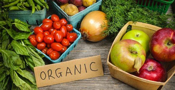 Going Organic: Craze or Credible?