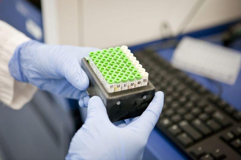dna gene research