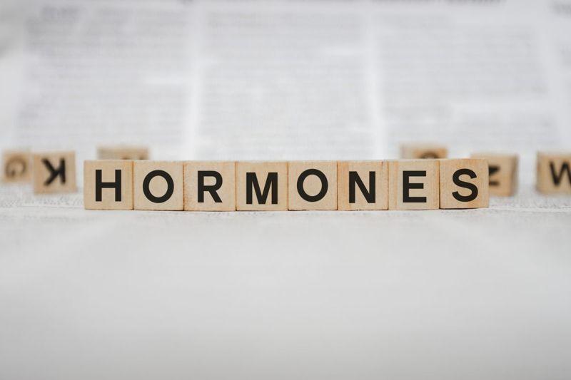endocrine system hormones