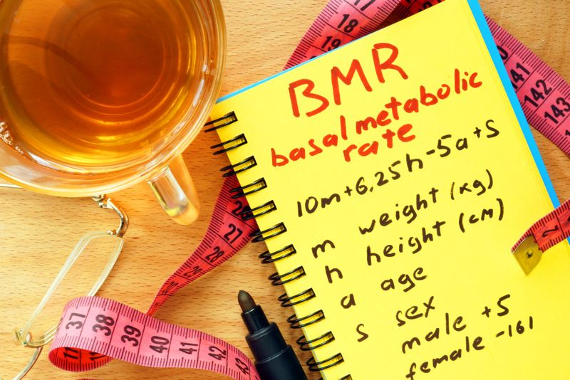 notebook explaining basal metabolic rate calculation