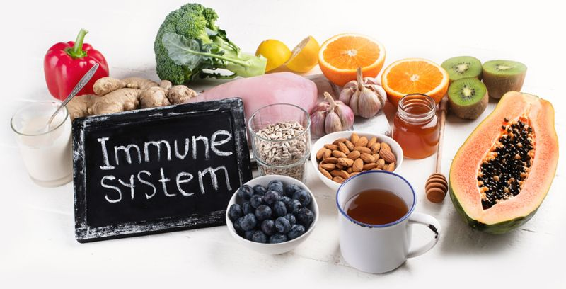 immune system healthy foods