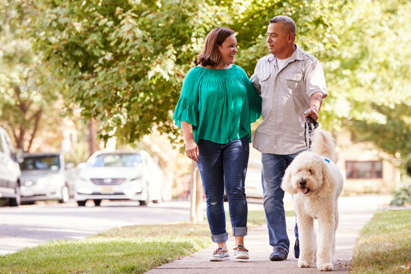 a middle-aged couple walking their dog