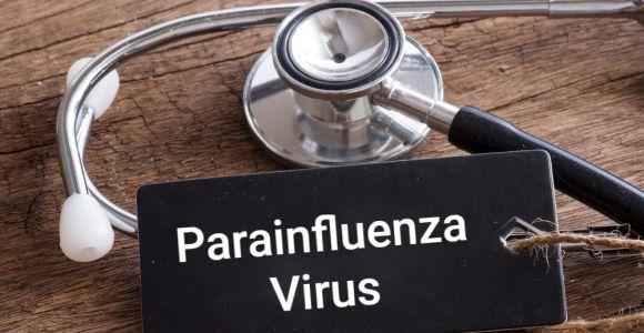 Parainfluenza Virus and Seasonal Illness