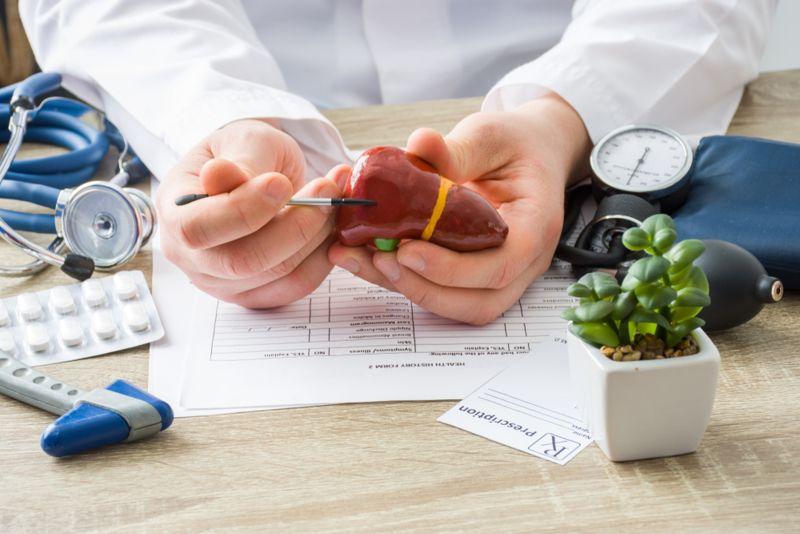 doctor showing spot on liver diagram