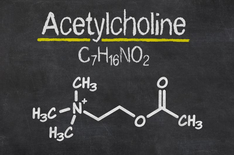 acetylcholine and chemical symbols on blackboard